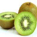 Kiwi Actinidia Jenny