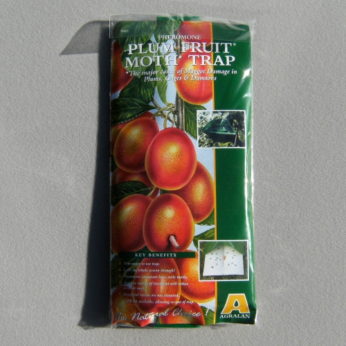 how to make a codling moth trap