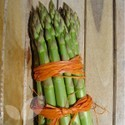 Portlim F1 (Asparagus Crowns)