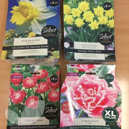 Bulb clearance pack half price clearance sale this spring flowering bulb pack will fill your garden with colour mightylinksfo