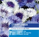 Cornflower Classic Fantastic