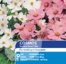 Cosmos Sonata Dwarf Mix