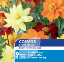 Cosmos Brightness Mix