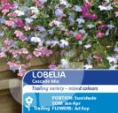 Lobelia Supacoat Cascade Mix
