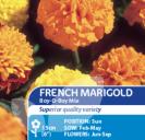 French Marigold Boy'O'Boy Mix