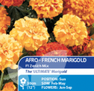 Afro French Marigold F1 Zenith Mix