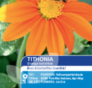 Tithonia Orange Sunshine