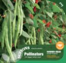 Runner Bean Scarlet Emperor (Pollinators)