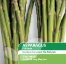 Asparagus F1 Ariane
