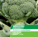 Broccoli F1 Monclano