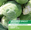 Brussels Sprout F1 Content