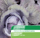 Cabbage F1 Lodero Red