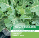 Cabbage (Collard) F1 Sweetie
