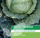 Cabbage Savoy F1 Serpentine