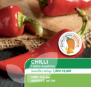 Chilli Pepper Fresno Supreme