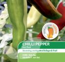 Chilli Pepper Hot Rod