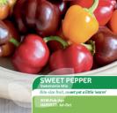 Sweet Pepper Sweetonia Mix