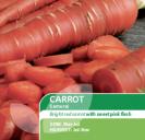 Carrot Samurai