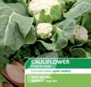 Cauliflower F1 Multihead