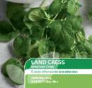 Land Cress American Cress