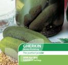 Cucumber Gherkin Venlo Pickling