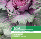 Kale Seed Buttonhole Starmaker