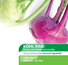 Kohl Rabi Purple & White Vienna Mix