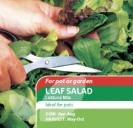 Leaf Salad Lettuce Mix Speedy Veg
