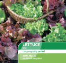 Lettuce Mixed Iceberg/Cos/Butterhead