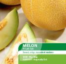 Melon F1 Lavi Gal