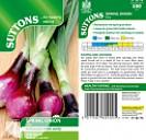 Onion Spring Lilia