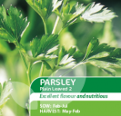 Parsley Plain Leaved 2