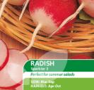 Radish Sparkler 3