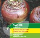 Swede Invitation