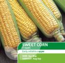 Sweet Corn Swift F1