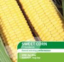 Sweet Corn Sundance F1