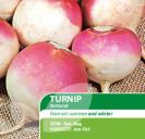 Turnip Armand
