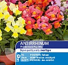 Antirrhinum F1 Crackle & Pop Mix