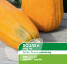 Squash Long Pie
