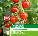 Tomato Crimson Cherry F1